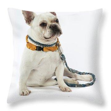 3010.068 Therapet Throw Pillow