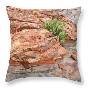 Colorful Sandstone In Valley Of Fire Throw Pillow
