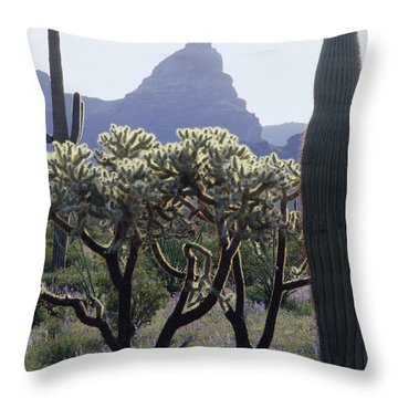 313737 Montezumas Head Throw Pillow