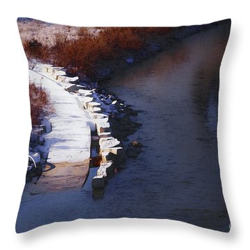 Throw Pillow featuring the digital art 33rd And Canal by David Blank