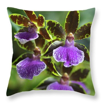 Fine Art Throw Pillow