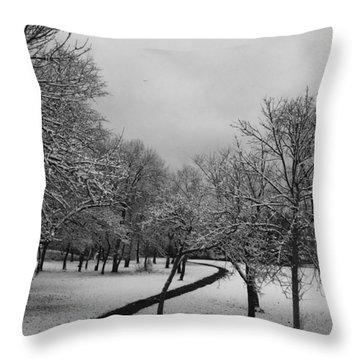 3416 Throw Pillow