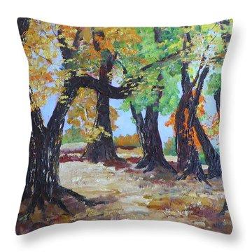 #35 Cottonwood Colors Throw Pillow