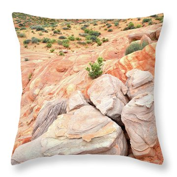 Throw Pillow featuring the photograph Multicolored Sandstone In Valley Of Fire by Ray Mathis