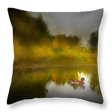 3895 Throw Pillow by Peter Holme III