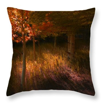 3907 Throw Pillow by Peter Holme III