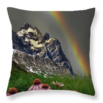 3960 Throw Pillow by Peter Holme III