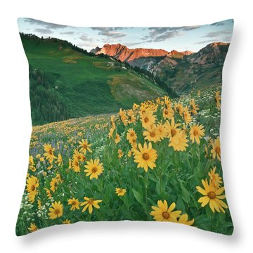 Albion Basin Wildflowers Throw Pillow