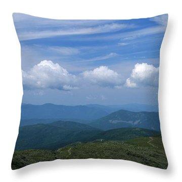 Appalachian Trail - White Mountains New Hampshire Usa Throw Pillow by Erin Paul Donovan