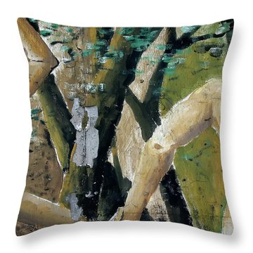 Berlin Wall Mural Throw Pillow