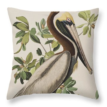 Brown Pelican  Throw Pillow by John James Audubon