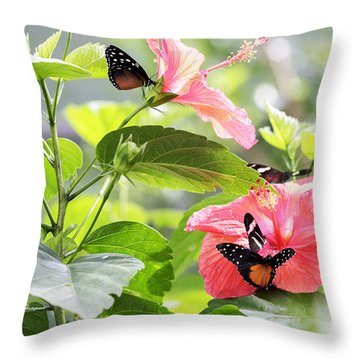 Throw Pillow featuring the photograph Cream-spotted Clearwing Butterfly by Richard J Thompson