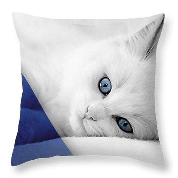 Cat Collection Throw Pillow