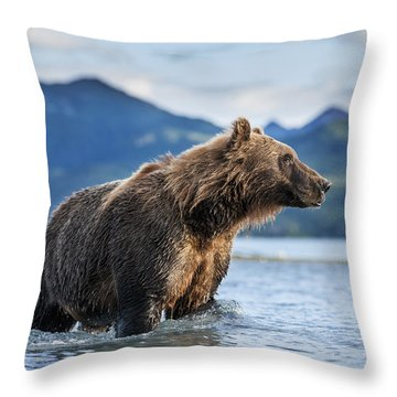 Coastal Brown Bear  Ursus Arctos Throw Pillow by Paul Souders