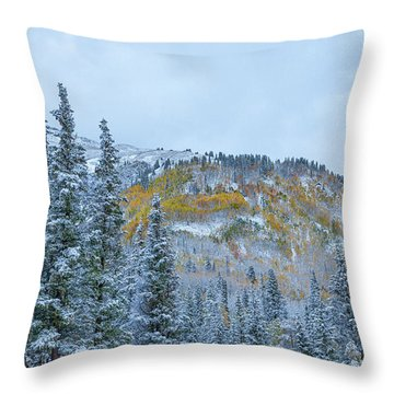 Colorado Fall Foliage 2 Throw Pillow