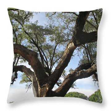 Cork Oak And Pines Throw Pillow