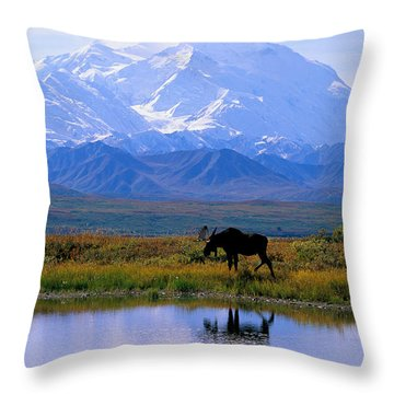 Denali National Park Throw Pillow