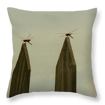 4 Dragon Flies...... Throw Pillow