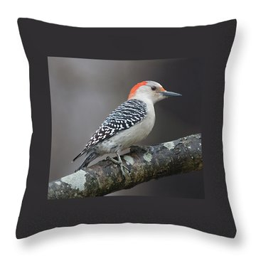 Female Red-bellied Woodpecker Throw Pillow