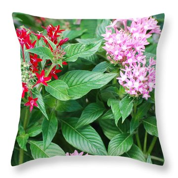 Throw Pillow featuring the photograph Flowers by Rob Hans