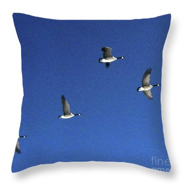 4 Geese In Flight Throw Pillow