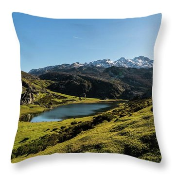 Glacier Formed Throw Pillow