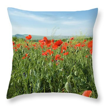 Meadow With Red Poppies Throw Pillow