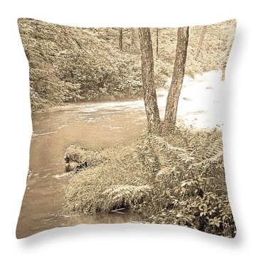Throw Pillow featuring the photograph Mud Run Pocono Mountain Stream Pennsylvania by A Gurmankin