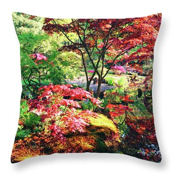 Throw Pillow featuring the photograph Nature Background Panorama by Ariadna De Raadt