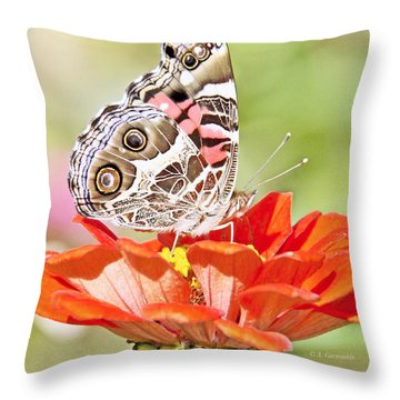 Painted Lady Butterfly On Zinnia Flower Throw Pillow