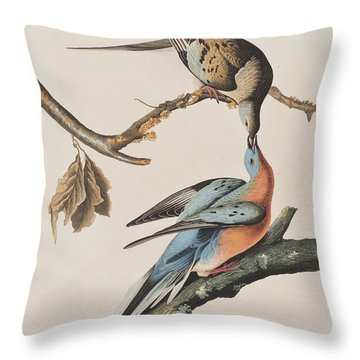 Passenger Pigeon Throw Pillow by John James Audubon