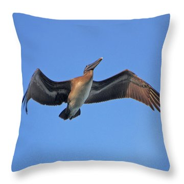 Throw Pillow featuring the photograph 4- Pelican by Joseph Keane
