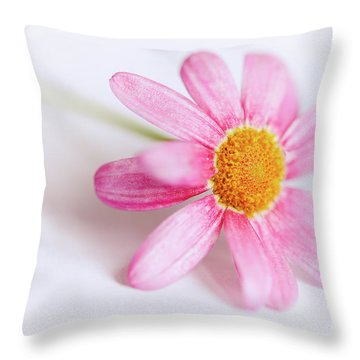 Throw Pillow featuring the photograph Pink Aster Flower by Nick Biemans