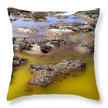 Throw Pillow featuring the photograph Primordial Soup by Bob Wall