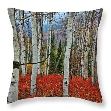 Rocky Mountain Fall Throw Pillow