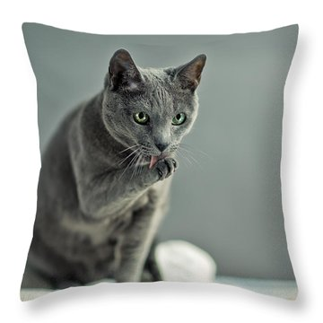 Russian Blue Throw Pillow