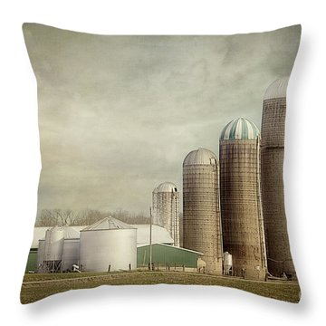 4 Silos Throw Pillow