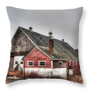 Stands With Dignity Throw Pillow