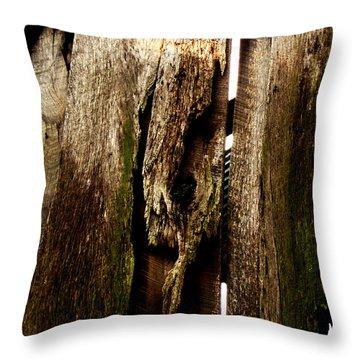 Texture Series Throw Pillow by Amanda Barcon