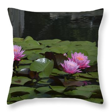 Water Lilies Throw Pillow by Linda Geiger