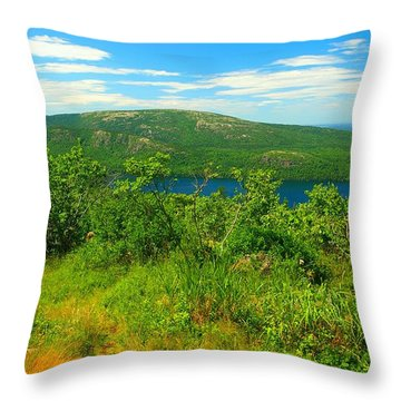 White Mountain's  Throw Pillow