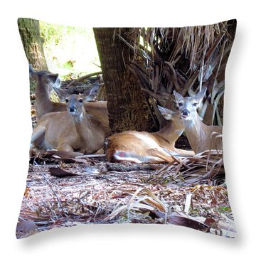 4 Wild Deer Throw Pillow