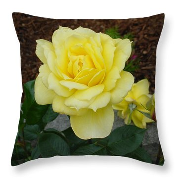 4 Yellow Roses Throw Pillow by Shirley Heyn