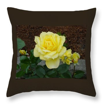 4 Yellow Roses Throw Pillow