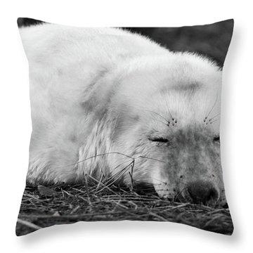 40 Winks Throw Pillow