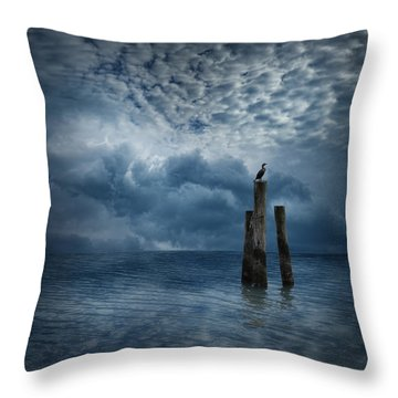 4008 Throw Pillow by Peter Holme III