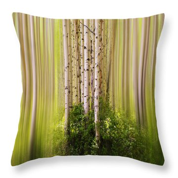 4012 Throw Pillow by Peter Holme III