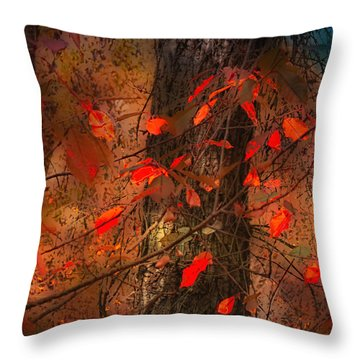 4019 Throw Pillow