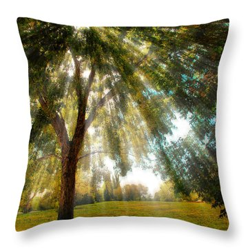 4095 Throw Pillow