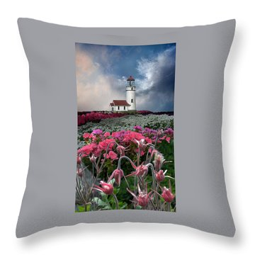 4170 Throw Pillow by Peter Holme III